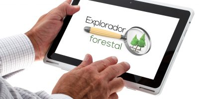 Crean una aplicación para hacer seguimiento de incendios y plagas en España
